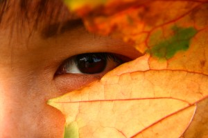 eye peering through leaves